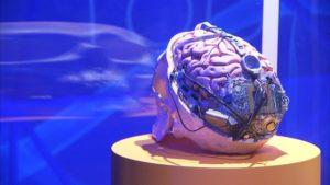 Cerveau augmenté